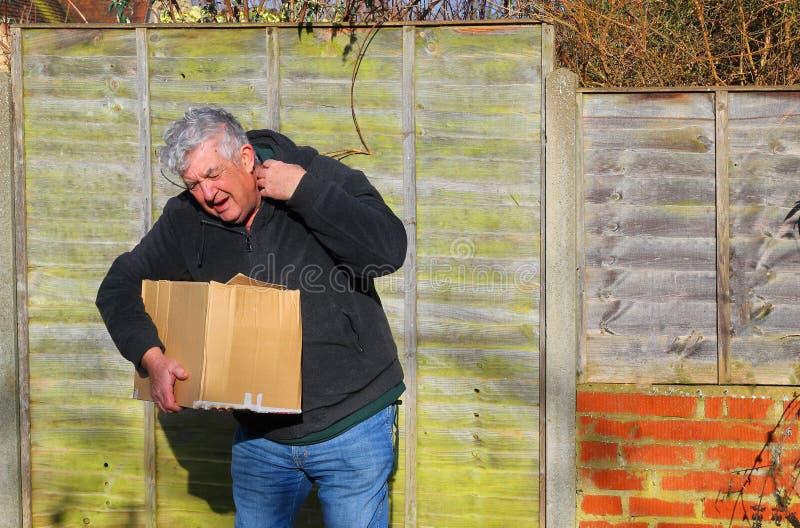 Homem na dor que leva a caixa pesada Tensão do ombro fotos de stock