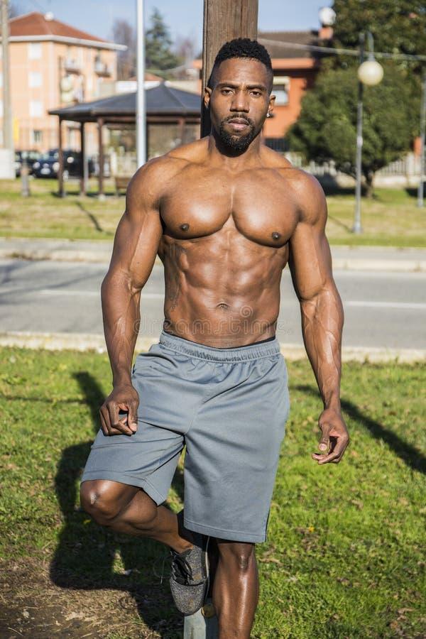 Homem negro descamisado muscular no parque fotografia de stock