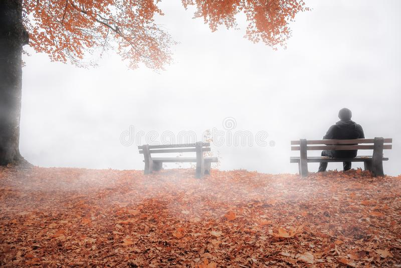 Homem no banco encoberto pela névoa na decoração do outono foto de stock royalty free