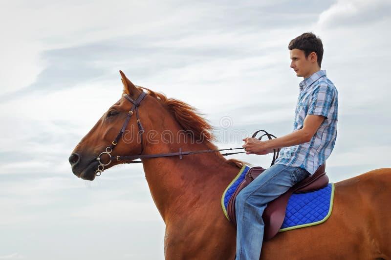Homem no cavalo imagens de stock