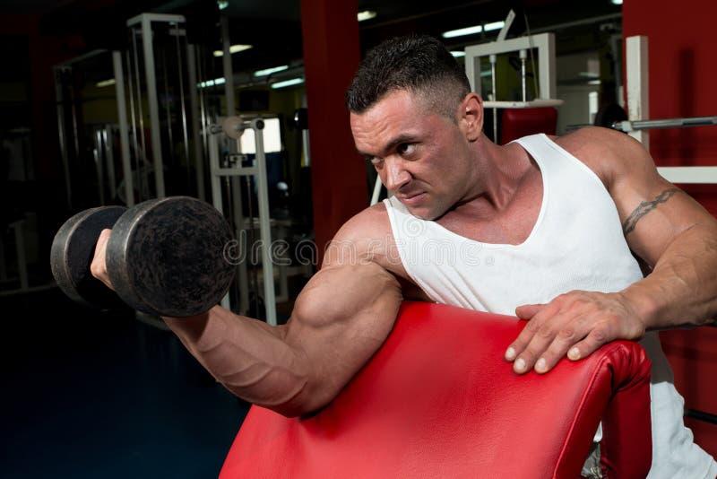 Homem no Gym que exercita o bíceps com pesos imagens de stock royalty free
