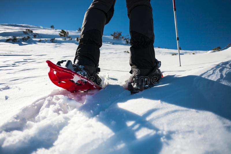 Homem nos sapatos de neve nas montanhas imagem de stock