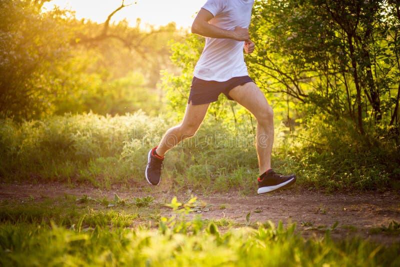 Homem novo atlético que corre na natureza imagens de stock royalty free