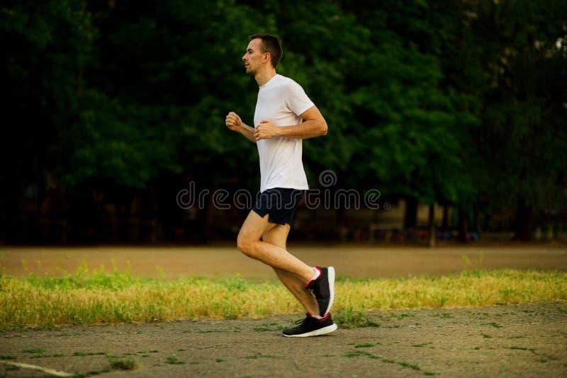 Homem novo atlético que corre na noite da natureza fotografia de stock