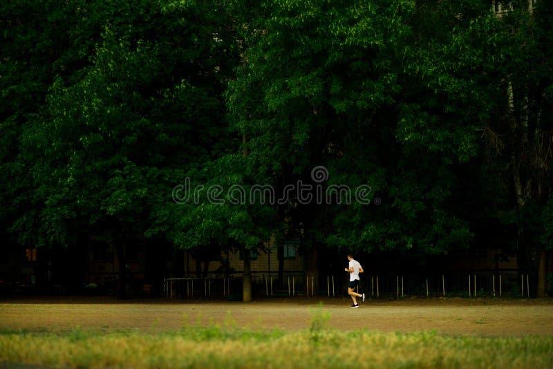 Homem novo atlético que corre na noite da natureza fotos de stock royalty free