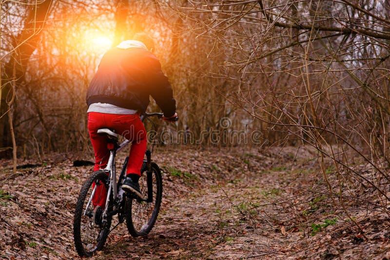 Homem novo com a bicicleta da equitação da trouxa na estrada da montanha na floresta imagem de stock royalty free