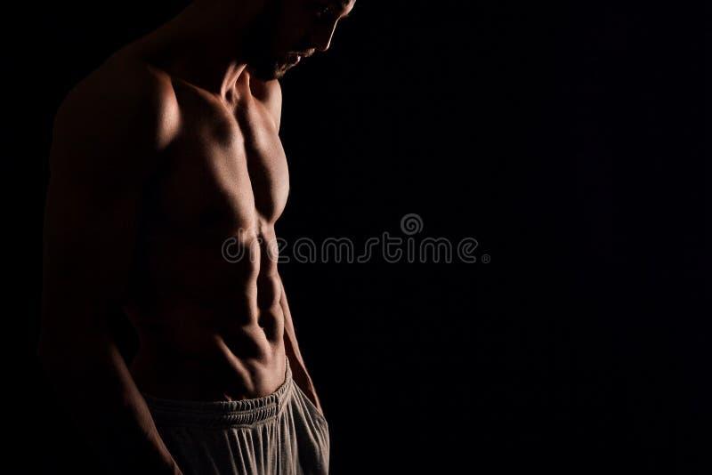 Homem novo com torso muscular fotos de stock