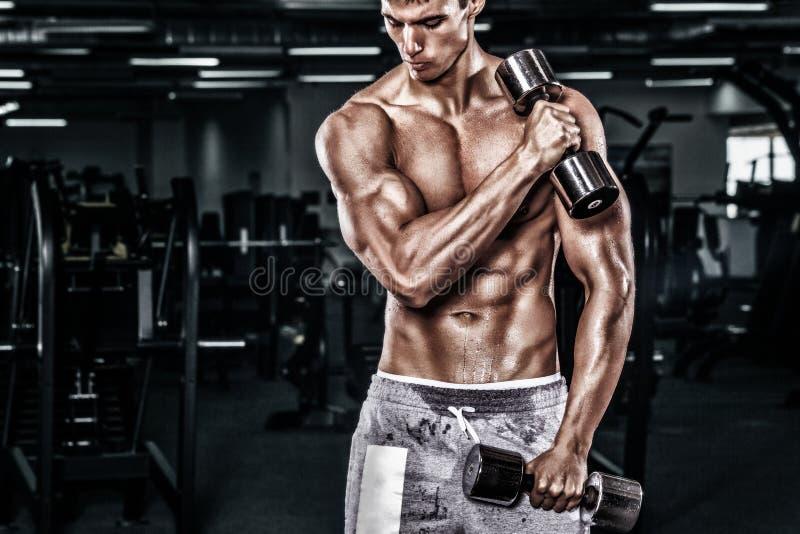 Homem novo descamisado atlético dos esportes - o modelo da aptidão guarda o peso no gym Copie a frente do espaço seu texto imagens de stock royalty free