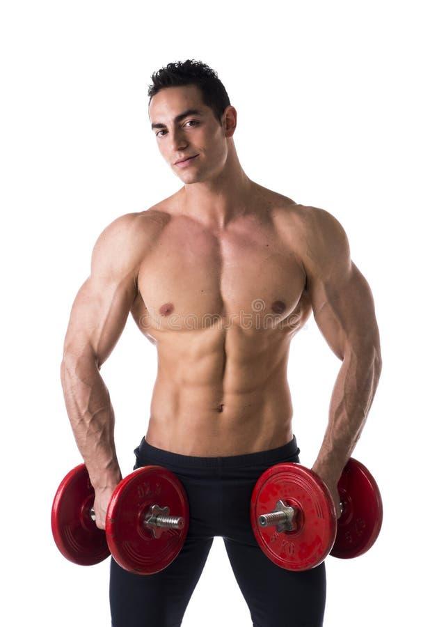Homem novo descamisado muscular feliz que guarda pesos imagem de stock