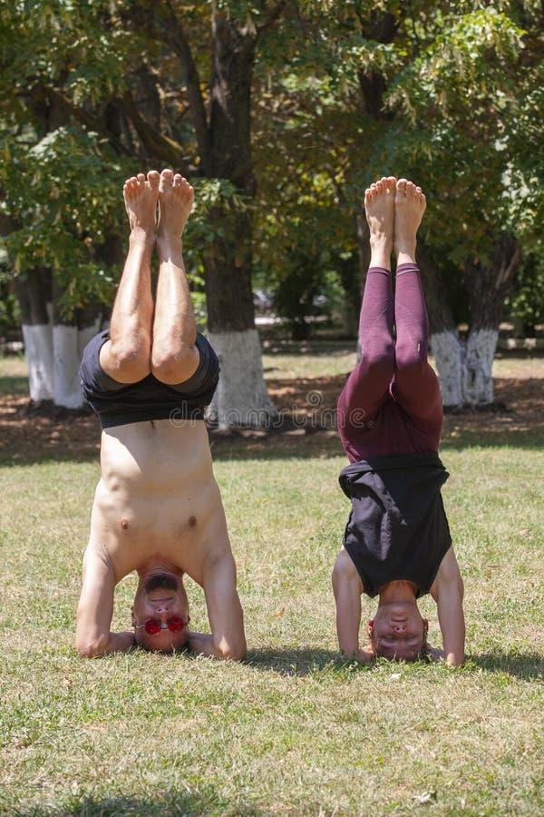 Homem novo e mulher que fazem a ioga no parque ensolarado do ver?o fotografia de stock royalty free