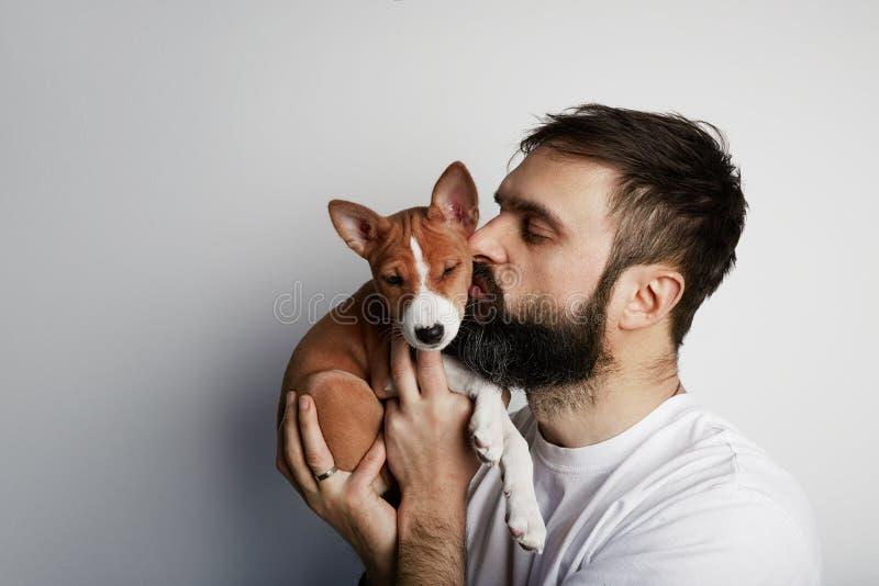 Homem novo farpado feliz que olha de surpresa o cachorrinho bonito do basenji que aspira seu nariz imagens de stock royalty free