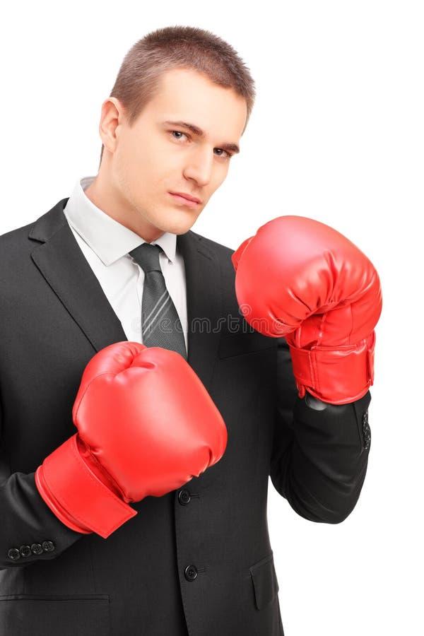 Homem novo no terno com as luvas de encaixotamento vermelhas prontas para lutar imagem de stock