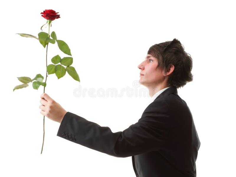 Homem novo que apresenta uma flor - rosa do vermelho isolada foto de stock