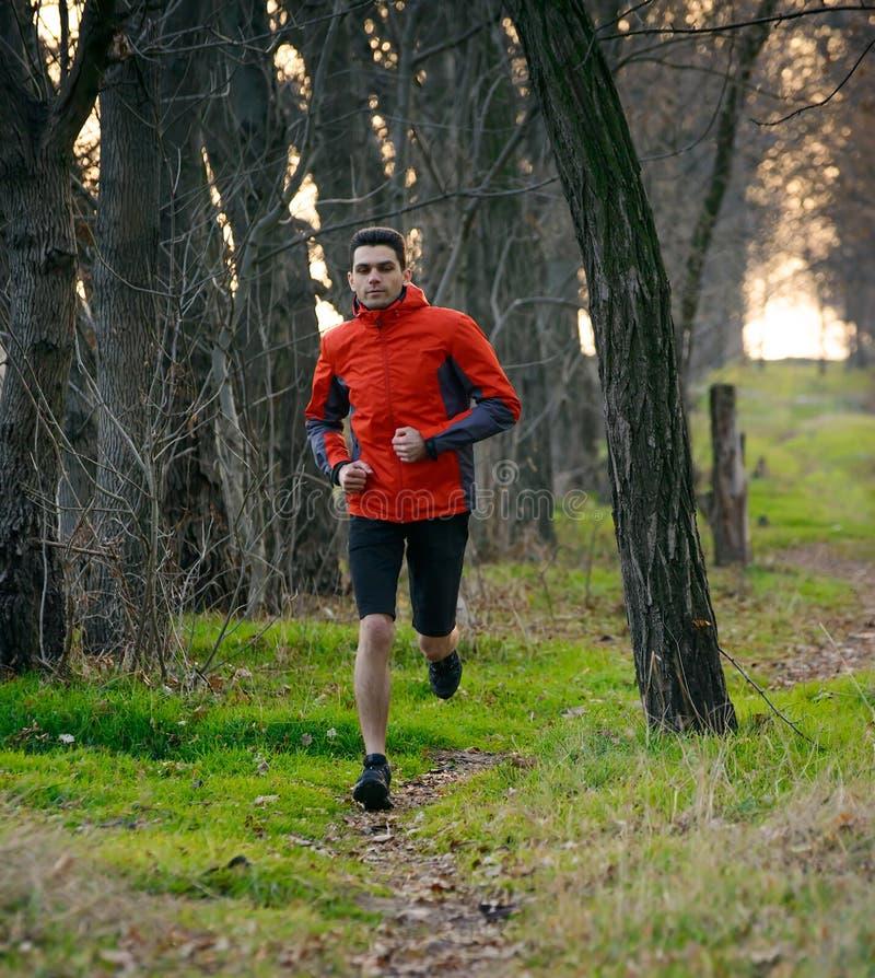 Homem novo que corre na fuga na floresta selvagem fotos de stock