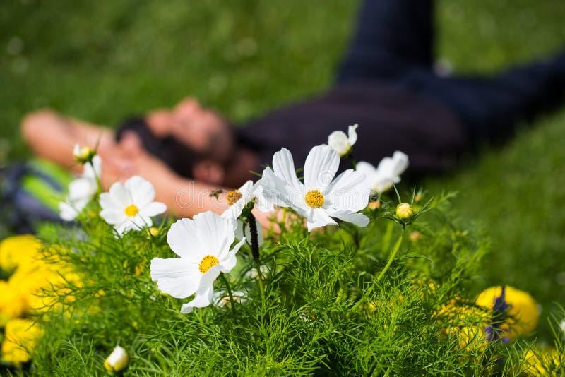 Homem novo que encontra-se entre flores na grama fotografia de stock royalty free