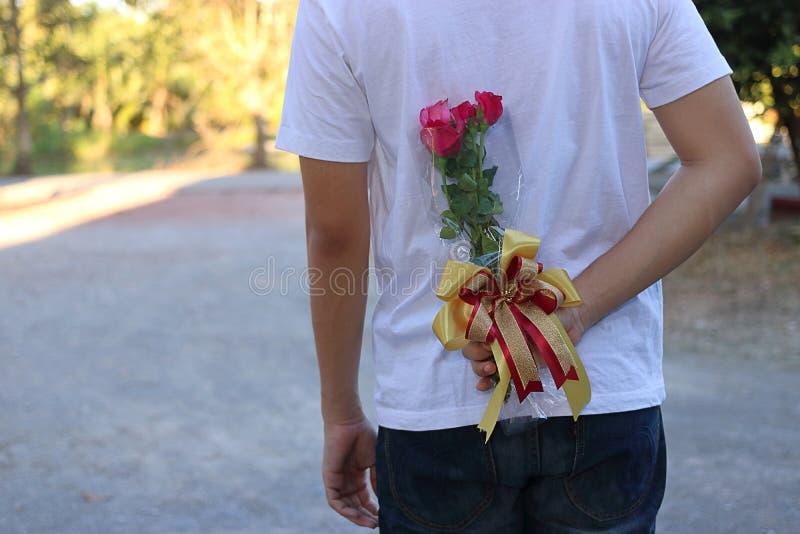 Homem novo que esconde rosas vermelhas atrás do seu para trás para a surpresa sua amiga em honra do dia do ` s do Valentim fotografia de stock royalty free