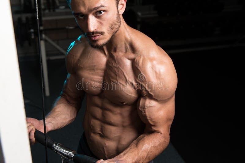Homem novo que exercita o bíceps no Gym imagem de stock royalty free