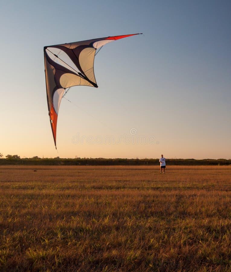 Homem novo que voa um papagaio no dia de verão ensolarado imagem de stock