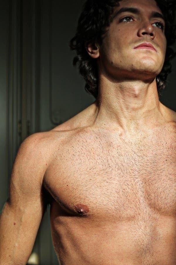 Homem novo 'sexy' com torso despido foto de stock