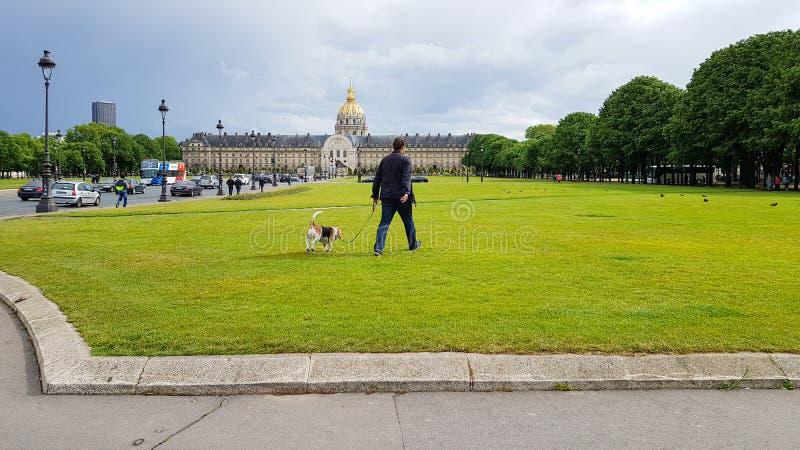 Homem parisiense caminha com cão em campos verdes de grama perto de Disabled House, Les Invalides Museum com cúpula dourada, Pari fotos de stock