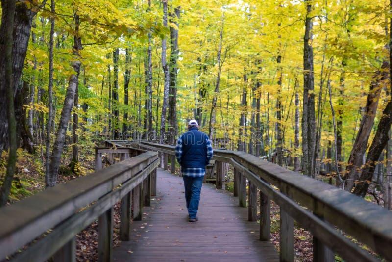 Homem que anda abaixo de caminhar o trajeto no outono fotos de stock