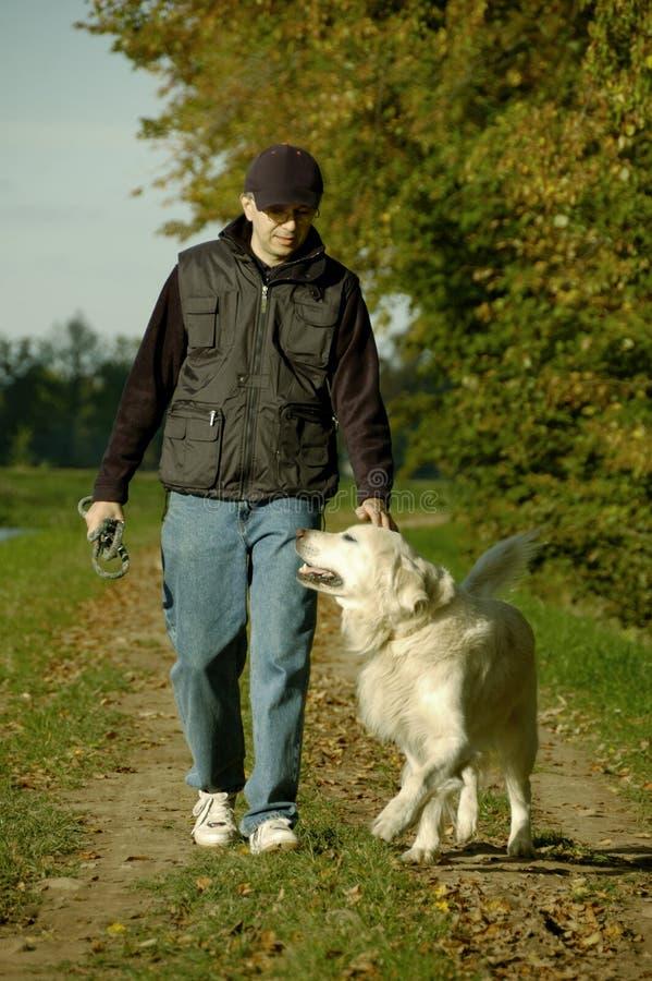 Homem que anda com cão foto de stock royalty free