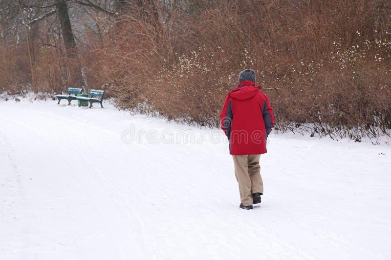 Homem que anda na neve fotos de stock
