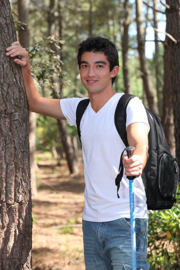 Homem que anda nas madeiras fotografia de stock royalty free