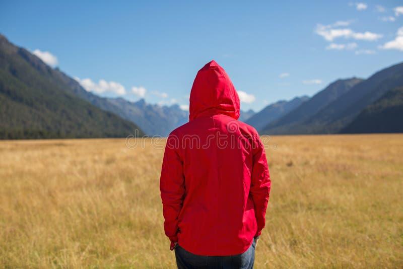 Homem que aprecia a vista, Nova Zelândia fotografia de stock