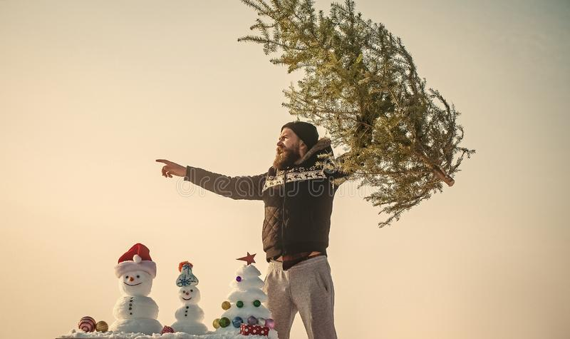 Homem que aumenta a árvore do xmas e que aponta o dedo fotos de stock