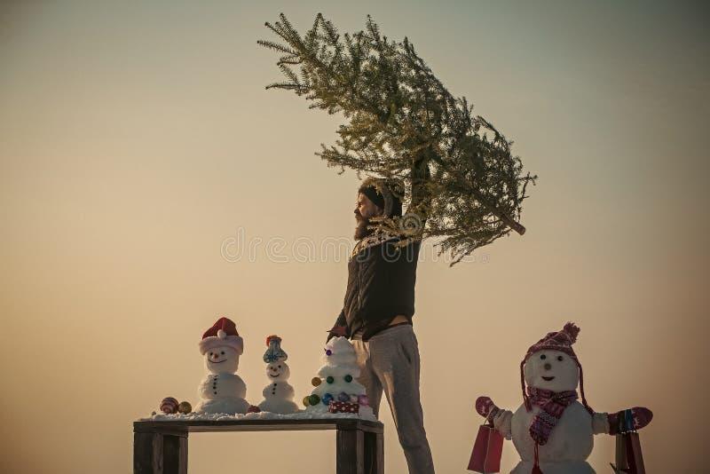 Homem que aumenta a árvore do xmas no céu azul fotos de stock