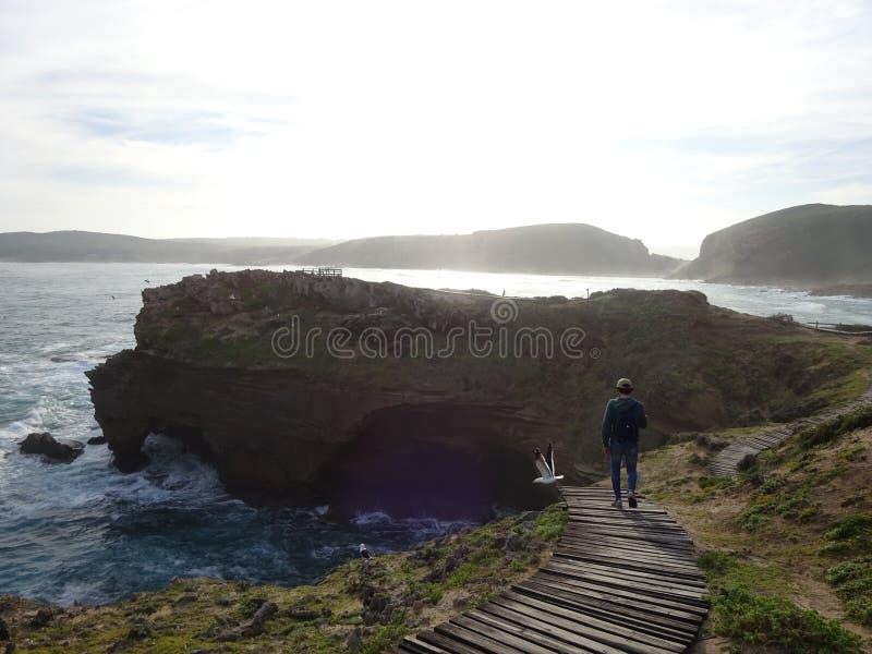 Homem que caminha na passagem de madeira da reserva natural de Robberg da rota do jardim que conduz para baixo à praia beatutiful fotografia de stock royalty free