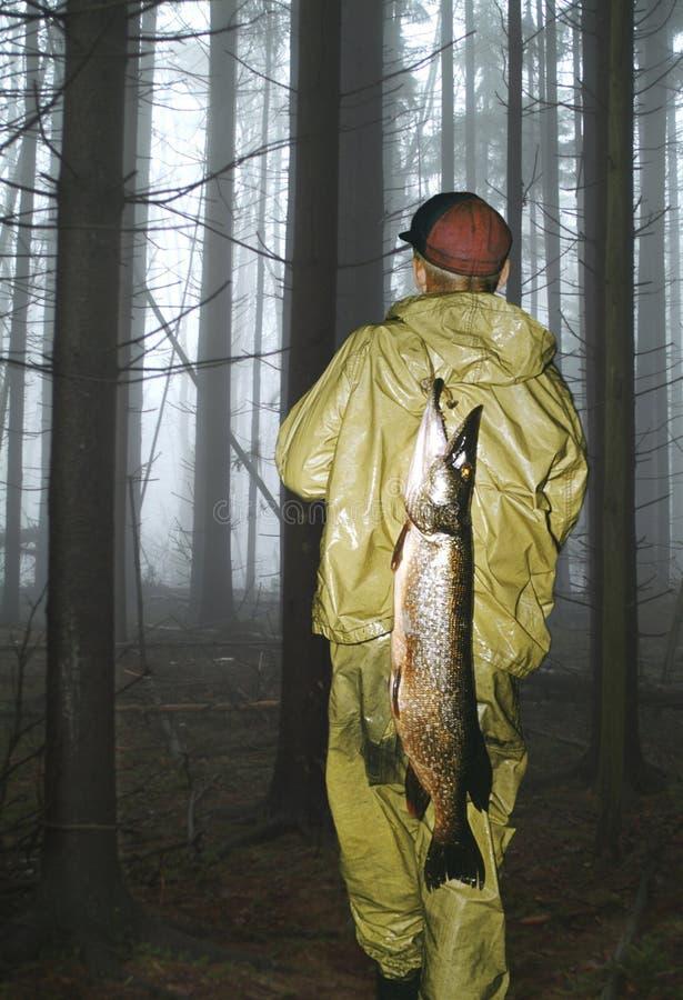 Homem que carreg peixes musky fotografia de stock royalty free