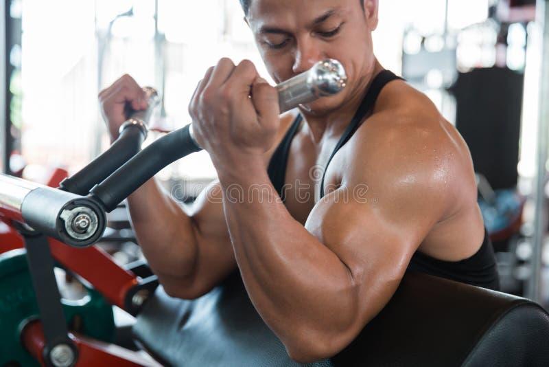Homem que faz o exercício pesado para o bíceps fotografia de stock royalty free