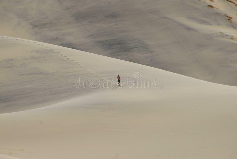 Homem que funciona na duna de areia de Eureka imagem de stock