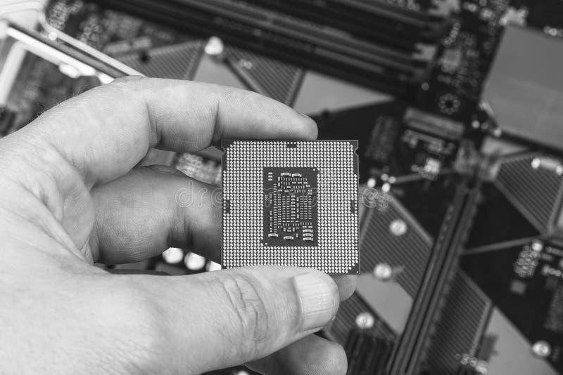 Homem que guarda gen do processador desktop dos dedos o 8o na opinião superior do close up do cartão-matriz do fundo, preto e bra foto de stock