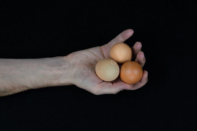 Homem que guarda três ovos em sua mão em um fundo preto da esteira imagens de stock