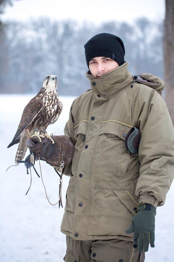 Homem que guarda um falcão imagens de stock