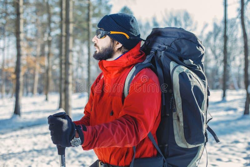 Homem que hikking na floresta nevado da montanha imagem de stock royalty free