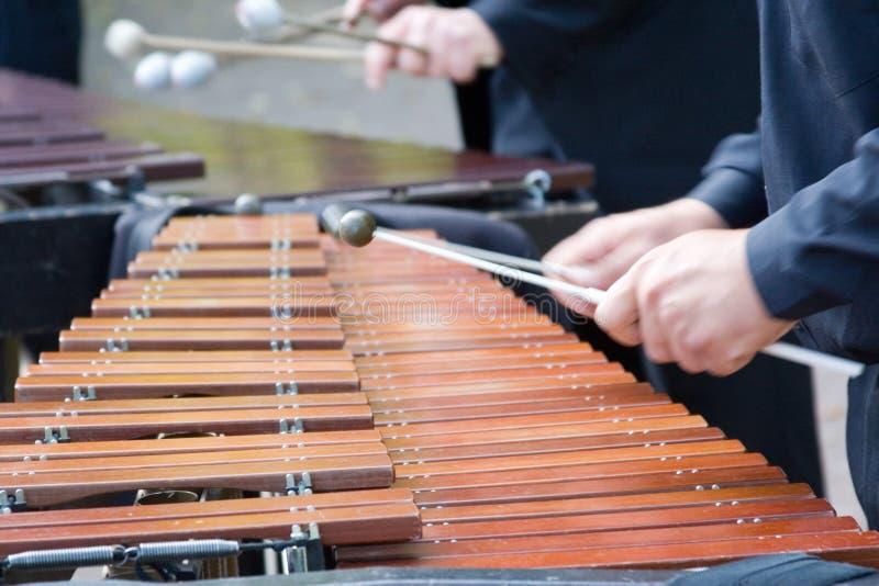 Homem que joga o xylophone fotos de stock