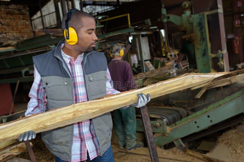 Homem que mantém o comprimento de madeira na serração fotos de stock
