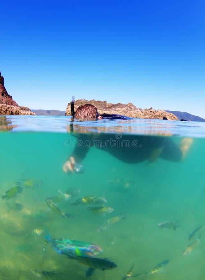 Homem que mergulha no mar com peixes tropicais foto de stock