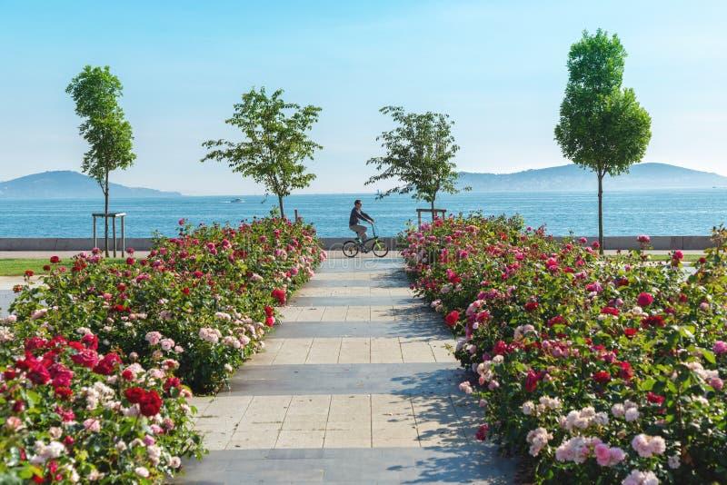 Homem que monta uma bicicleta através da costa de Bostanci com vista na Ilha dos príncipes foto de stock royalty free
