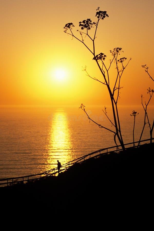 Homem que presta atenção ao por do sol do sul de Califórnia fotografia de stock