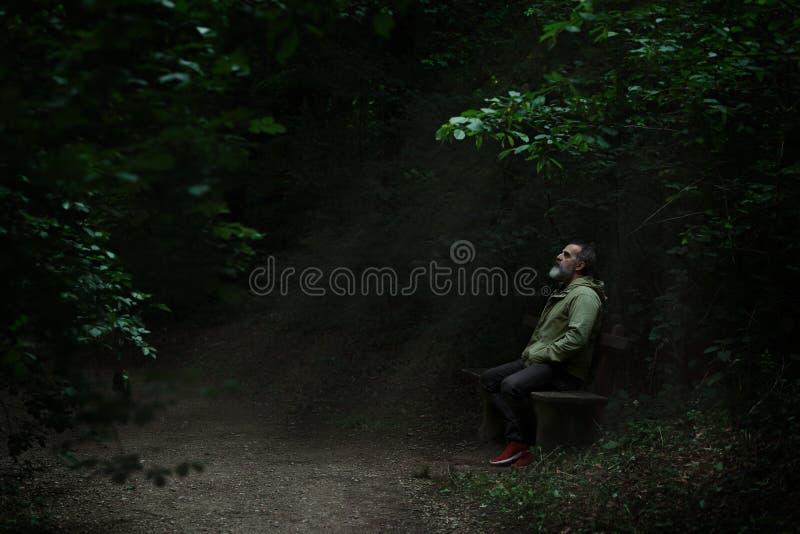Homem que senta-se em um banco no ponto claro no trajeto de floresta, cercado com a escuridão, olhando acima completa da esperanç fotos de stock