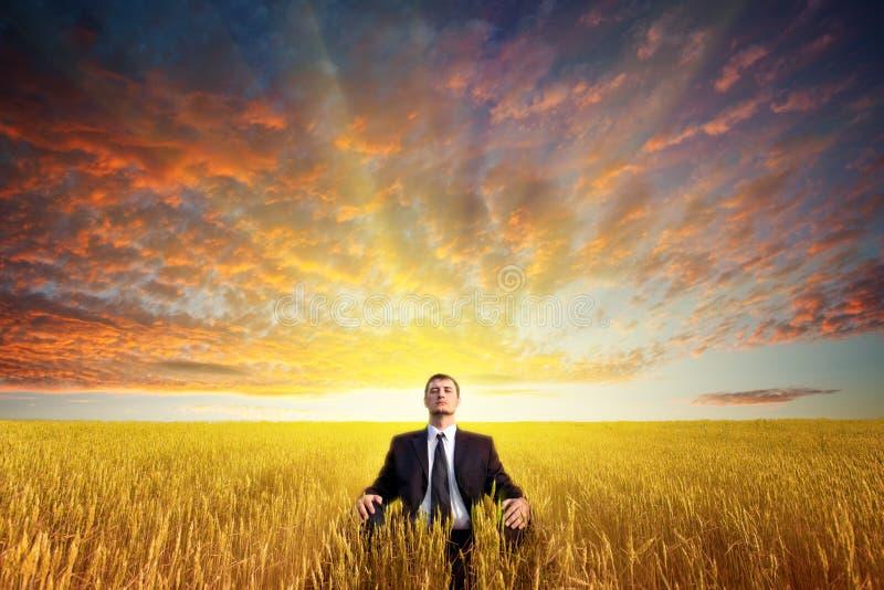 Download Homem Que Senta-se No Campo Foto de Stock - Imagem de mente, alegria: 26506148