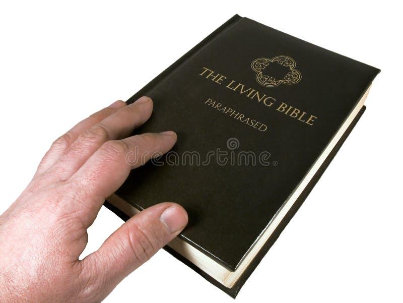 Homem Que Toca Na Bíblia Fotografia de Stock