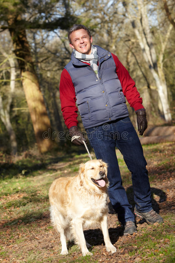 Homem que toma o cão na caminhada através de Autumn Woods fotos de stock royalty free