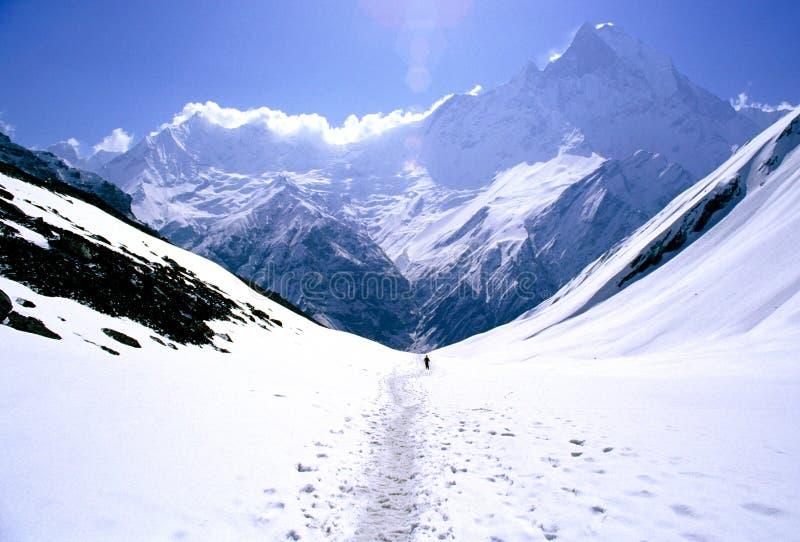 Homem que trekking em um vale fotografia de stock