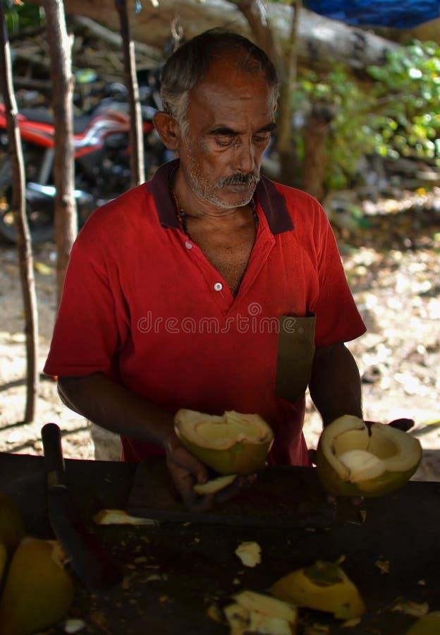 Homem que vende cocos fotos de stock